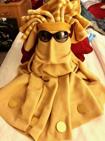Disney Cruise Line towel animal