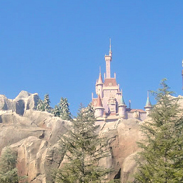 Beast Castle in Fantasyland