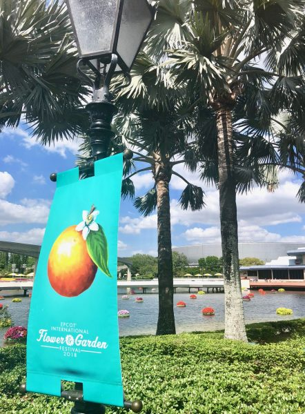 Expert Tips for Epcot International Flower and Garden First-Timers