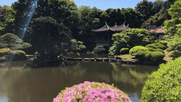 Japanese Gardens in Tokyo