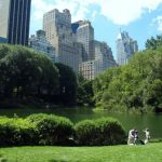The Health Benefits of Urban Parks and Green Spaces