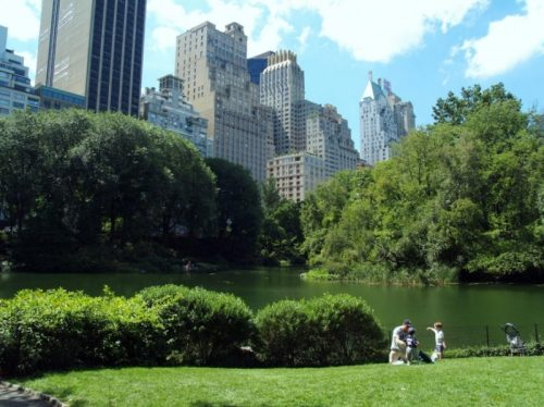Health benefits of urban parks